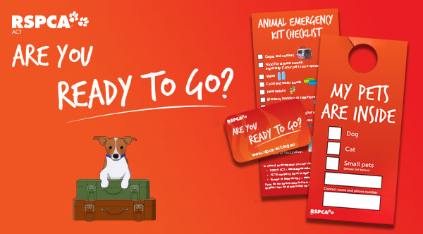 Get our FREE pet emergency preparation kit