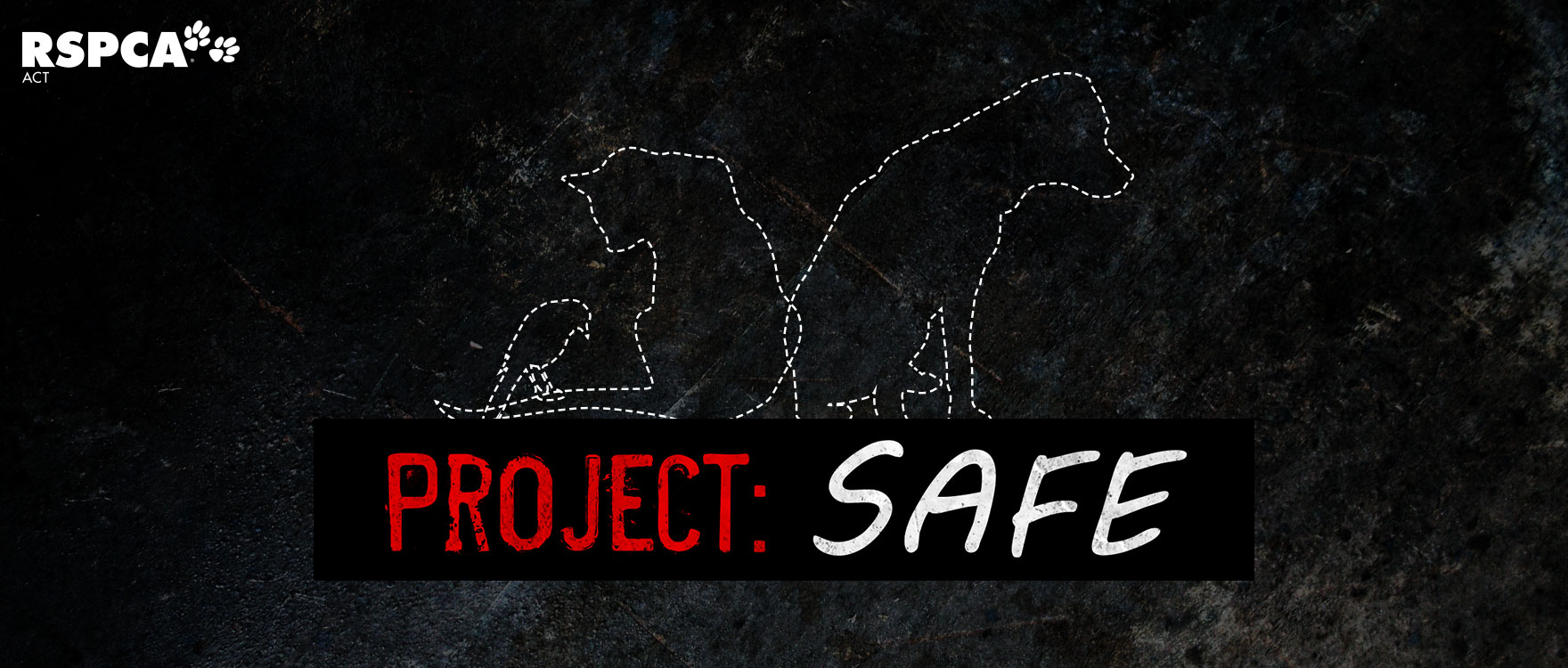 Can you help us support Project SAFE?