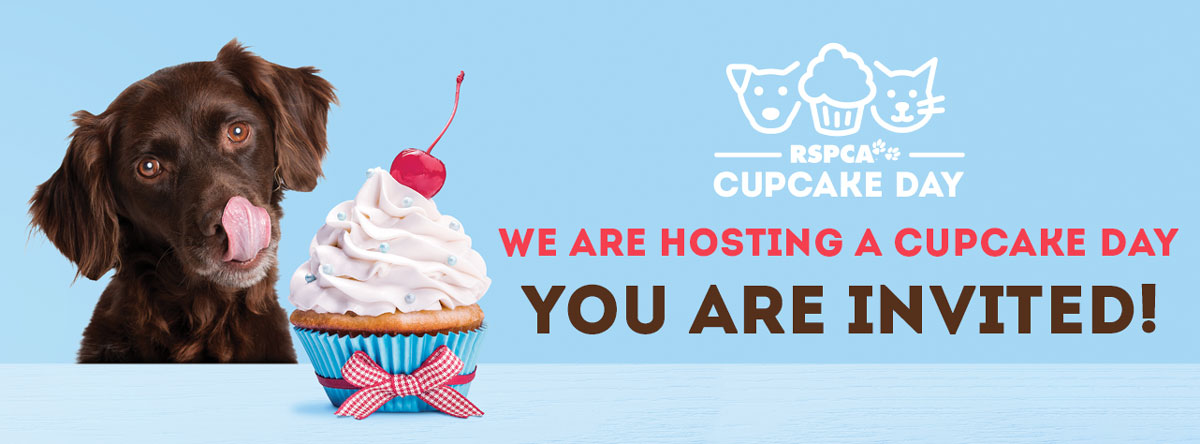 You are invited to our Cupcake Day