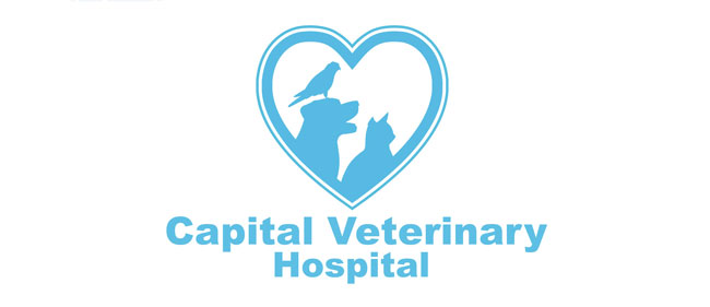 Capital Veterinary Hospital