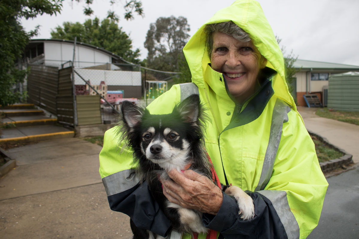 RSPCA ACT Dog Walker