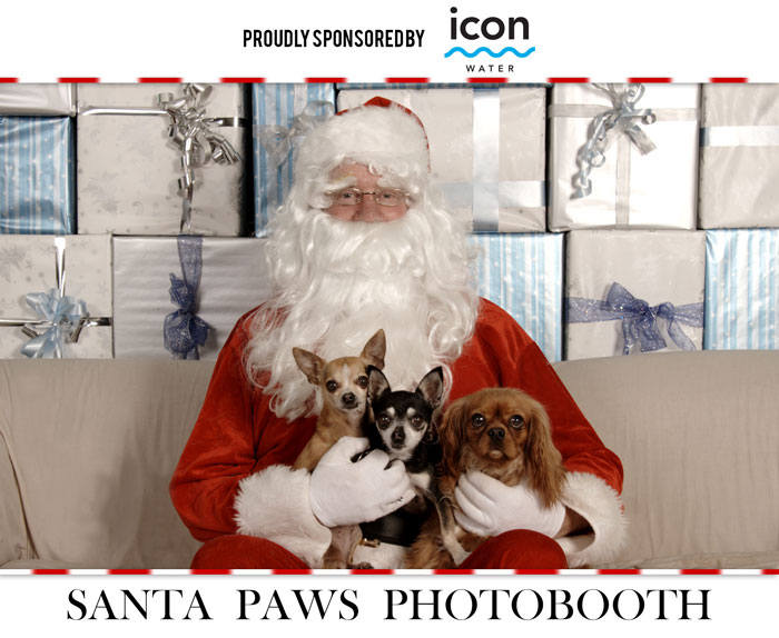 santapaws-photobooth.jpg