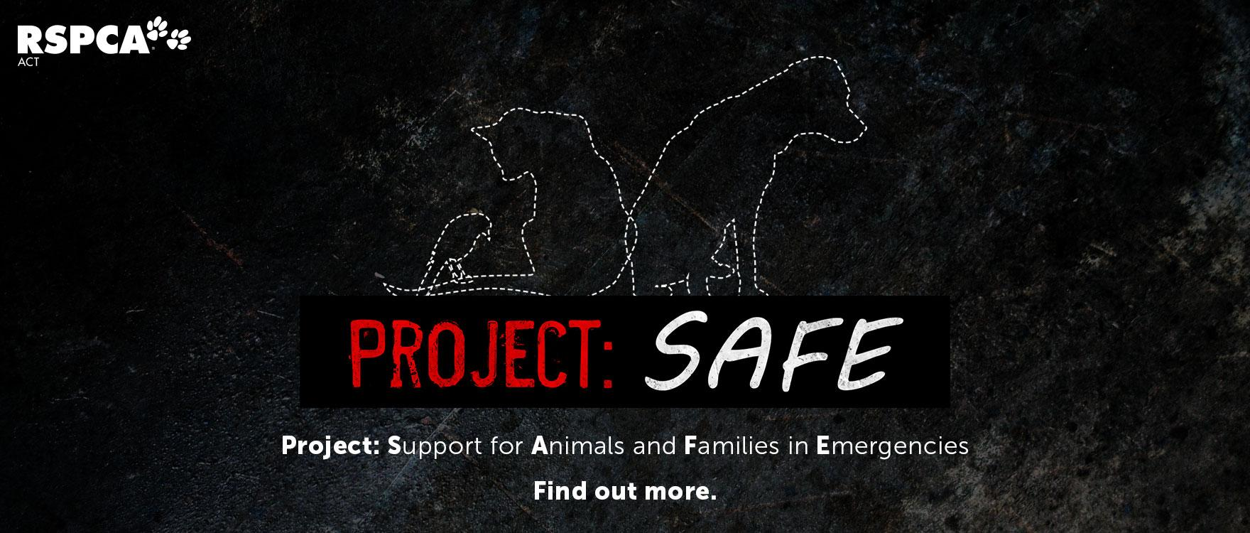 Project: SAFE