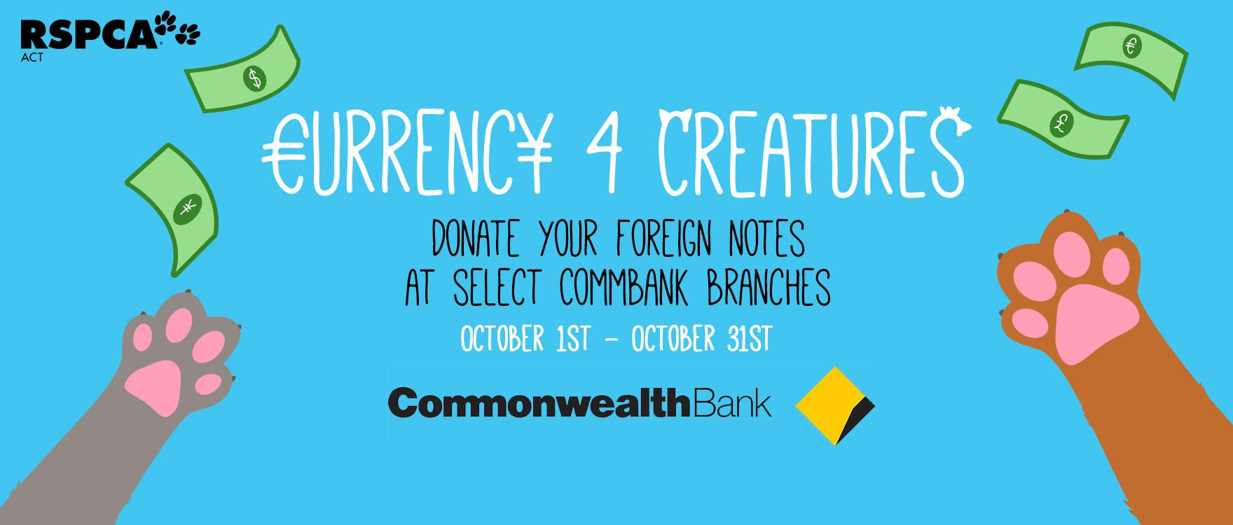Donate your foreign currency!
