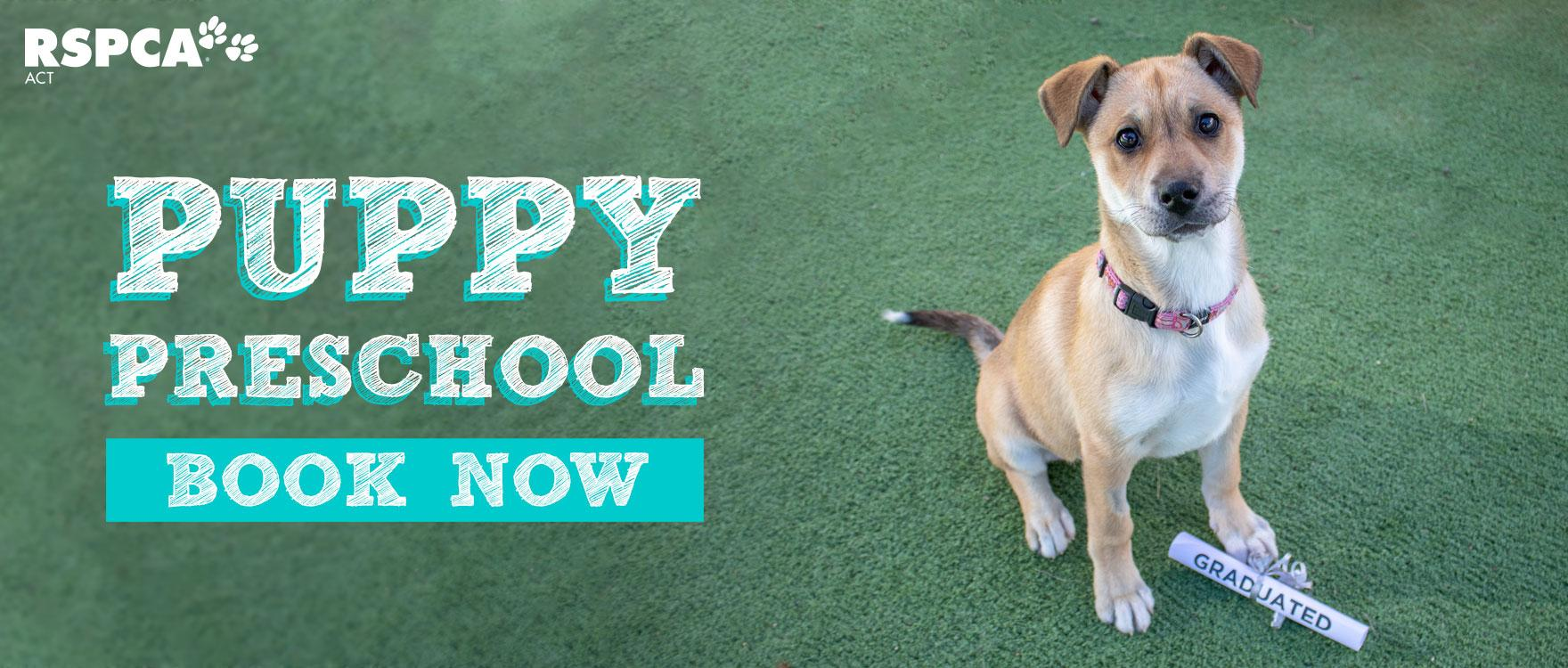 Puppy Preschool Classes available now!