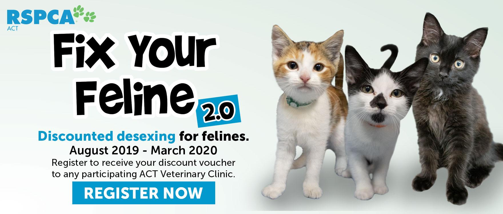 Discounted Feline Desexing with Fix Your Feline 2.0!